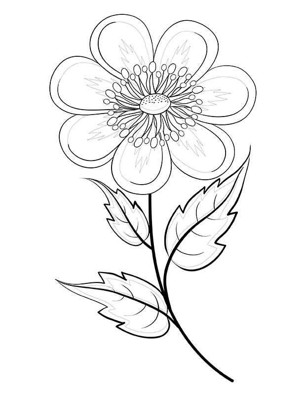 x rated coloring pages - photo #5